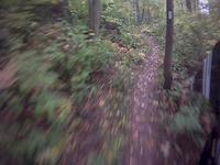 Local Track