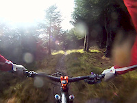 Glentress black trail