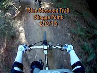 Blue Blossom Trail, Skeggs Point, 2/2/13