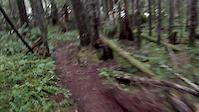 Steam Donkey - Slick Rock - That Damn Trail...