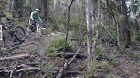 My 25 years of mtb party