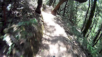 Roller Coaster Ride at Steven Canyon
