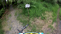 BeeCraigs Downhill