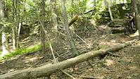 Log ride drop first time