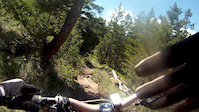 Merritt Ridge trail