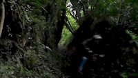 MTB : Downhill Black Forest