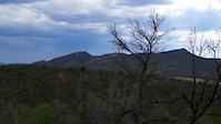 Snake Charmer - Horse Gulch - Durango, Co.