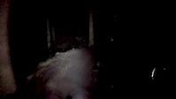 Hamsterley night ride. Nitrous section :)