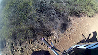 mariposa trail slo