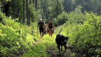 Trailbuilders - EnduRob trail