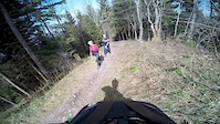 Bachtel Trail