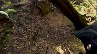 Ride | Picos - Farropo