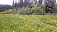 Riding with the Sun Peaks Bears