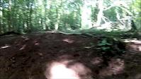 Castle Coch Road Gap