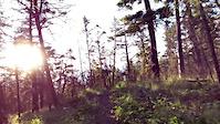 Upper Ridge Descent
