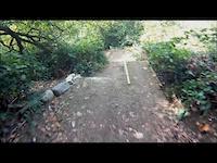 a fun video