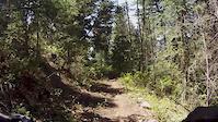 Downhill MTB GT Fury [3]
