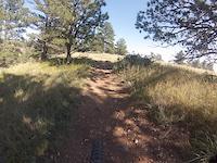 Bobcat Ridge 9 / 6 / 14    #1