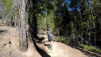 Pioneer, Scotts Flat Trail 10-4-14