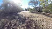 Foresthill Divide Loop Trail 11-5-14