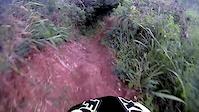 Kalaheo run