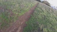 a lil trail ride
