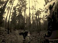 Go Big in Nürnberg trail-on-racing