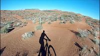 Gecko Trail POV