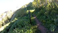 Sams Trail POV