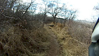Lambert Park Access Trail POV