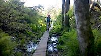 Ainhoa, 13 years old, riding Squamish