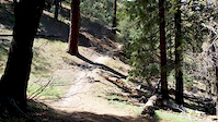 5 years old first descent of Mt. Pinos trail.
