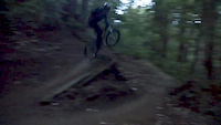 Jump in Soquel Forest