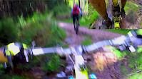 Surrey hills random Trail