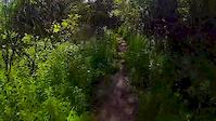 Fairbairn - Hobo Valley