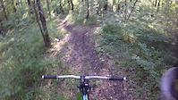 WDP Trail  3 KK