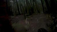 Sunshine Coast Trail Challenge 2013