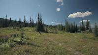 Altitude: Alpine XC Trail at Sun Peaks