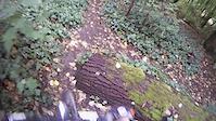 SFU: Gravity Bowl Trail