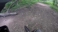 Farlow Gap Pisgah Forest
