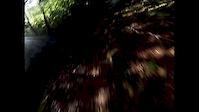 Cwmcarn.. Cafall & Pedalhounds