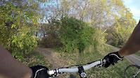Birdhouse Trail