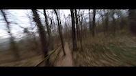 Trail Schwammerling