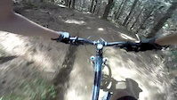 Woodhill: Nuggy Berms