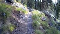 Alpine #7