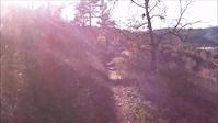 Noble Canyon Trail San Diego #POLAROIDXS80