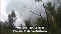 Forrest Edit