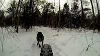 Louies First Snow Ride: Spider Lake