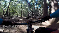Trek Remedy 29 on the Flow Trail(Sections 1-3)