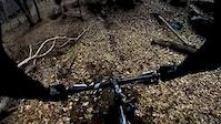 Mike's Trail + fatbike